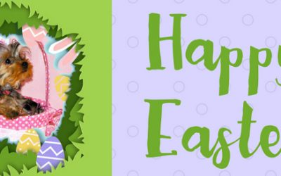 Easter Safety Tips