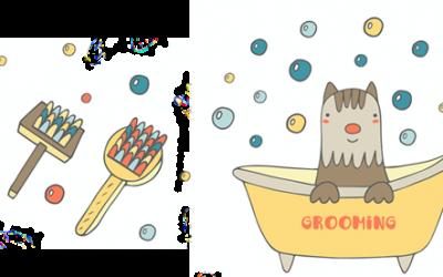 Bathtime! How to bathe your dog