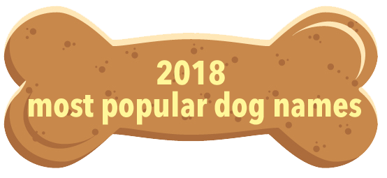 most popular dog names 2018