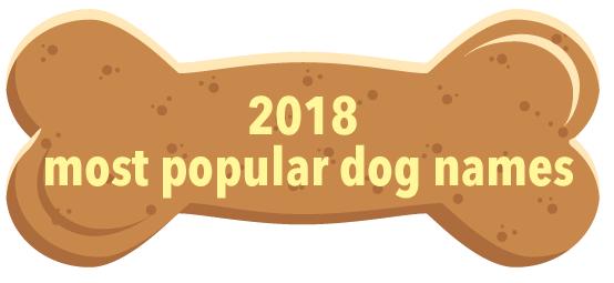 most popular dog names 2018