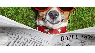 News dog: pups in the news — 2