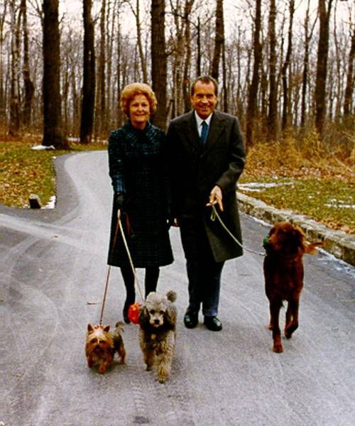 nixons and dogs