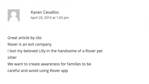 what owners say about dog walking services