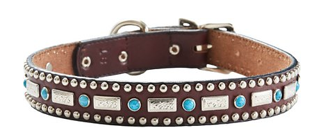 silver and turquoise dog collar