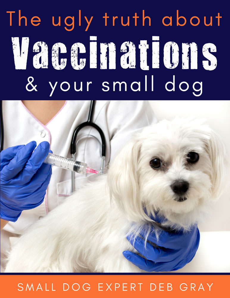 small dog vaccinations ebook