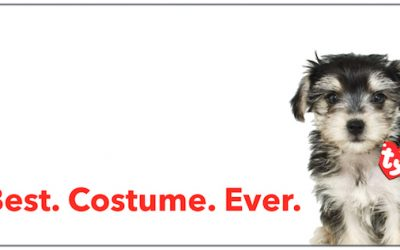 Funny dog costumes for your Morkie