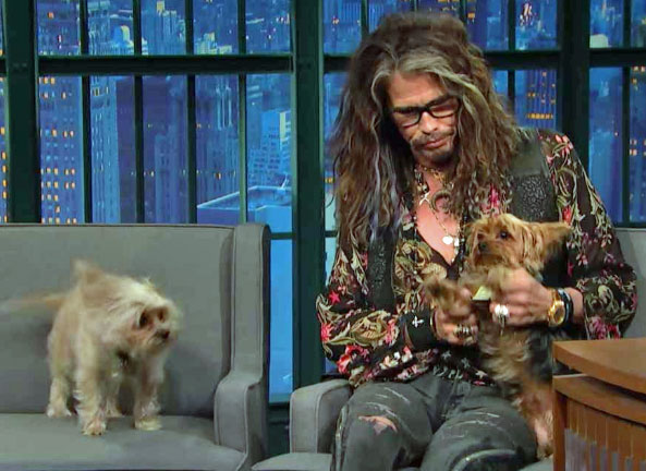 Steven tyler and his two dogs