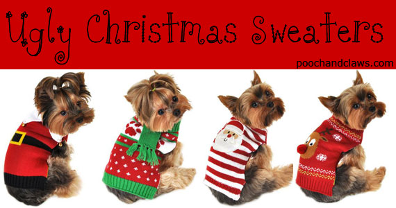 Ugly Dog Christmas Sweaters.Dogs Christmas Roundup About Morkies