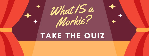 what is a morkie quiz