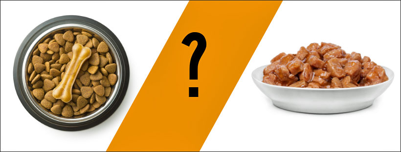 which food is better?