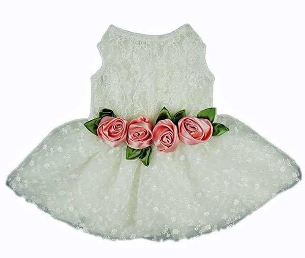 white tutu style dress for dog