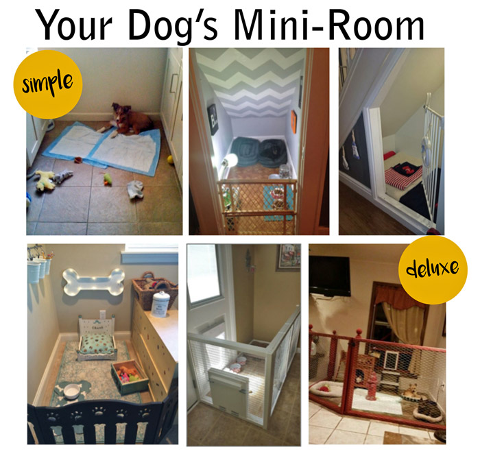 your dog's mini room